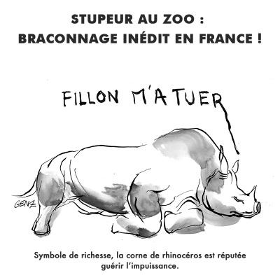 Stupeur au zoo: braconnage inédit en France! © Laura Genz 09/03/17